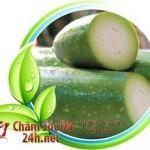 nhung phuong phap tri tan nhang ma ban chua biet12 150x150 Làm mờ tàn nhang bằng phương pháp tự nhiên