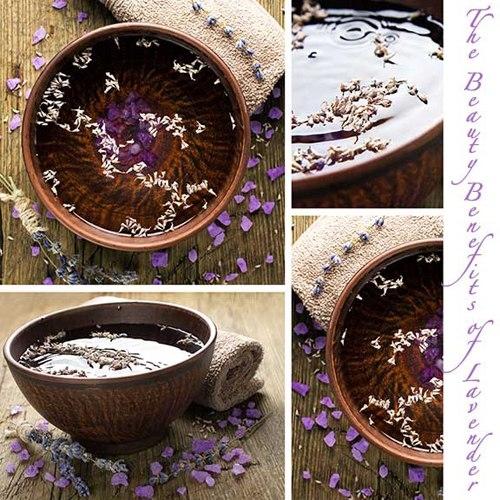 Chăm sóc da từ hoa oải hương