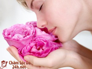 Công thức dưỡng trắng da nhờ những cánh hoa hồng