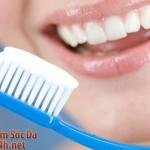 Cách chọn bàn chải tốt nhất cho hàm răng của bạn